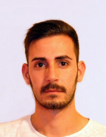 Diego Sinitò : Ph.D. Student